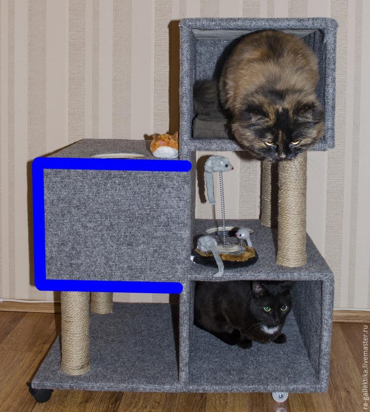 Дом для кота британца своими руками 19